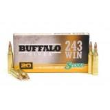 OSA Ammo Buffalo River Game King .243Win 100GN SPBT (20)