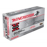 Winchester Super X Ammunition 22-250 Rem 55GN PSP (20)